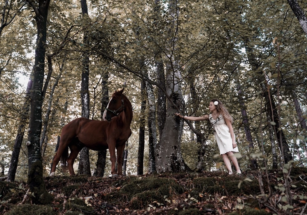 Neža Simčič, Forest Tales. Anja Papuga